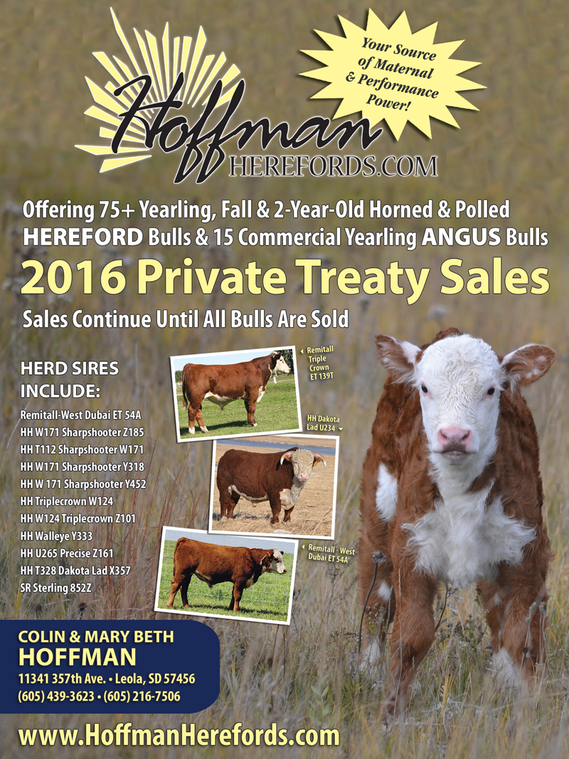 Hoffman Herefords Catalog