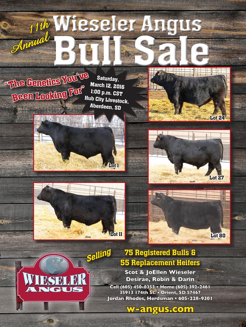 Wieseler Angus Bull Sale Catalog